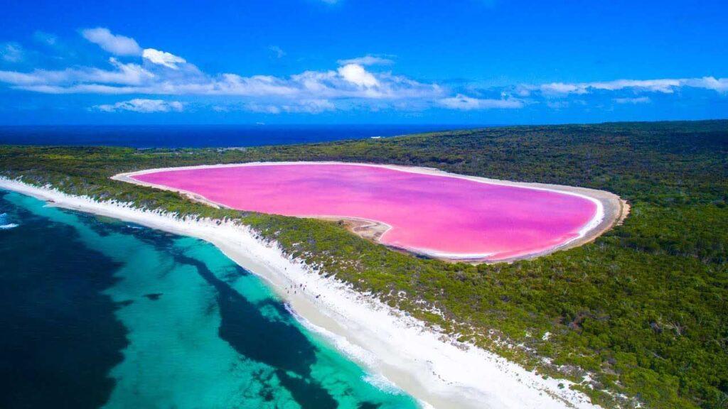 The pink lake in Australia